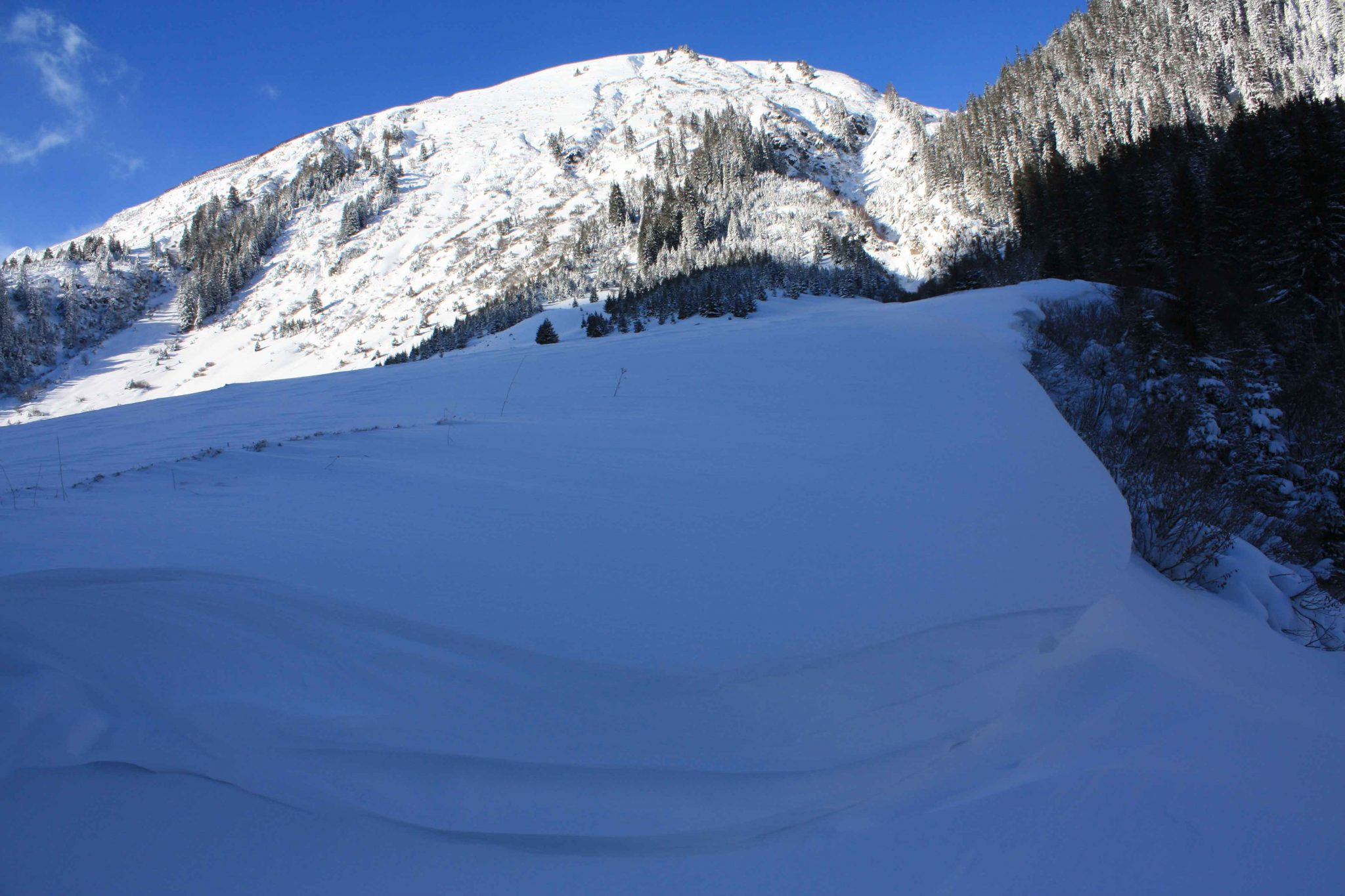 Glossary Snowdrift accumulation © LWD Tirol | EAWS European Avalanche Warning Services