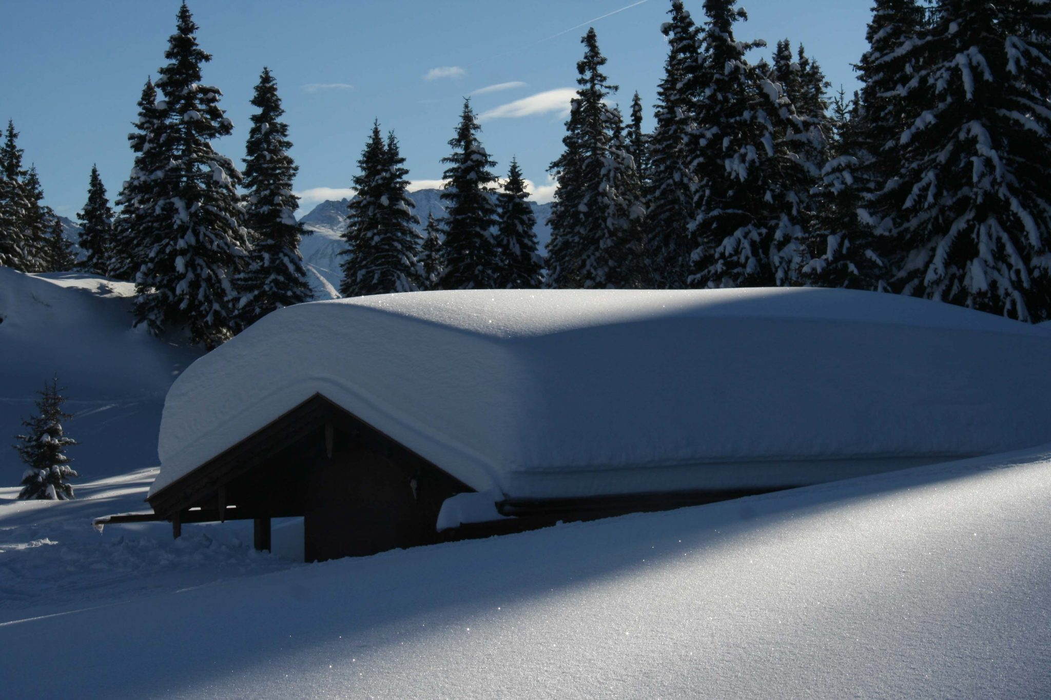 Glossary Unbonded Snow, lacking cohesion © LWD Tirol | EAWS European Avalanche Warning Services