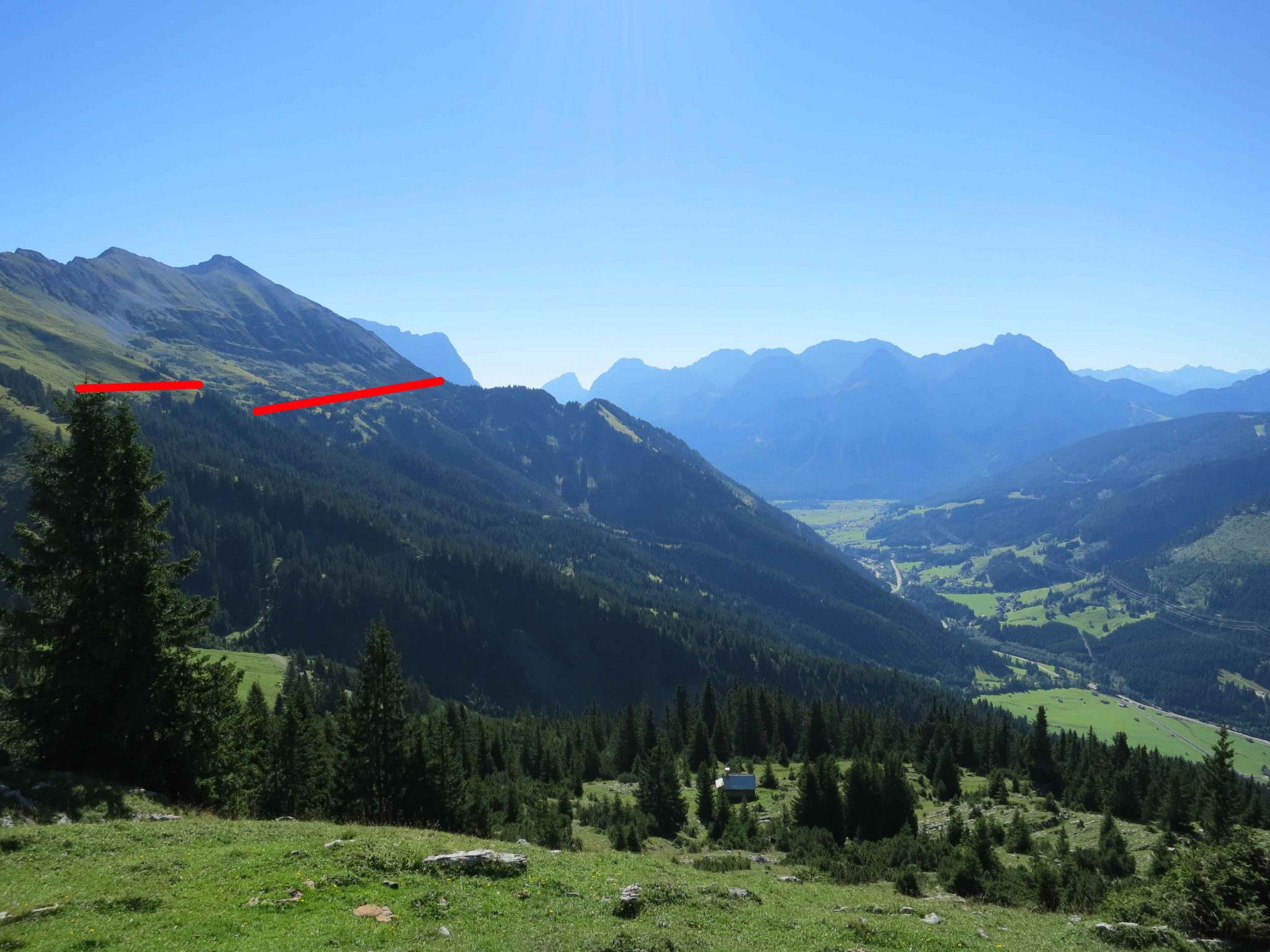 Glossary Tree Line, border of a forest © LWD Tirol | EAWS European Avalanche Warning Services